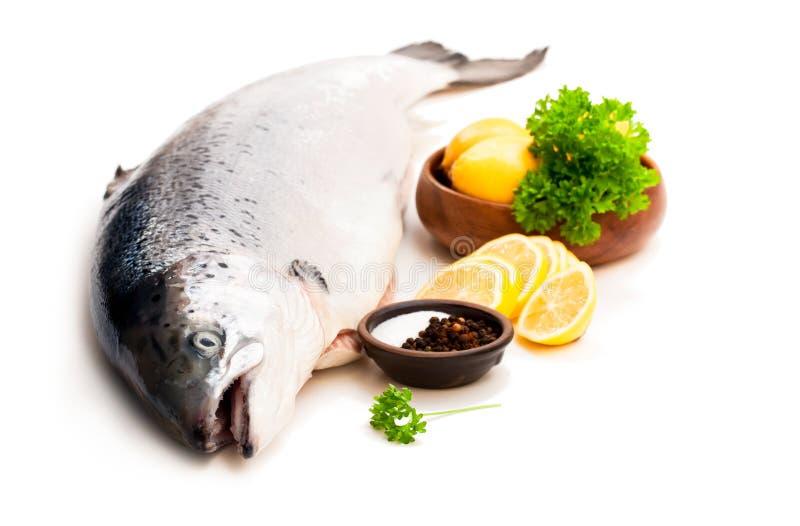 Ciérrese para arriba en un rawsalmon entero con el limón y la sal aislados en w imagenes de archivo