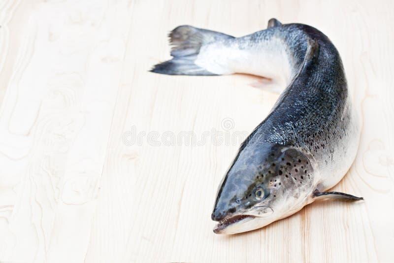 Ciérrese para arriba en un salmón crudo entero en fondo de madera foto de archivo
