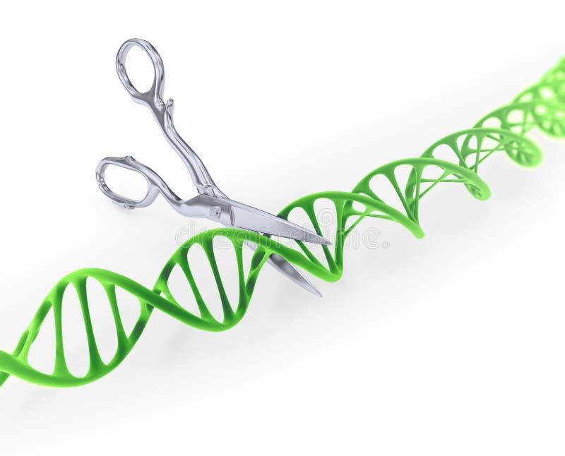 Ciąć DNA ilustracji