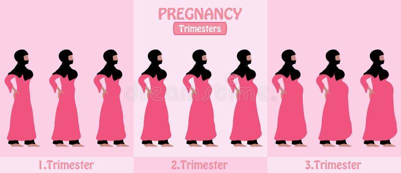 Ciążowi trymestry ciężarna muzułmańska kobieta z religijnym vei ilustracja wektor