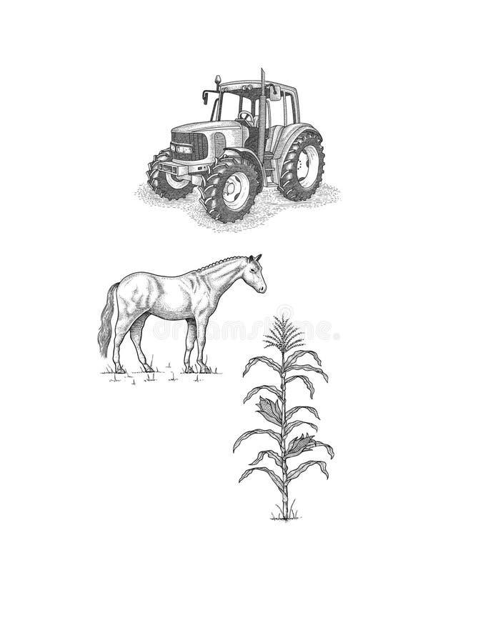 Ciągnik, koń i kukurudza, b/w dla agricultura , ilustracja wektor