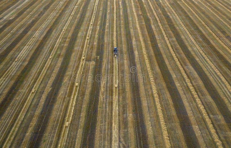 Ciągnik, rolnicza maszyneria zbiera słomę w snopach, widok od quadcopter zdjęcia royalty free