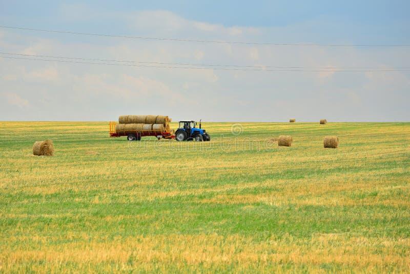 Ciągnik zbiera siano w snopach i bierze je z pola po kośby adra Agroindustrial przemysł fotografia stock