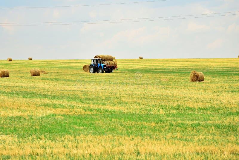 Ciągnik zbiera siano w snopach i bierze je z pola po kośby adra Agroindustrial przemysł zdjęcia royalty free