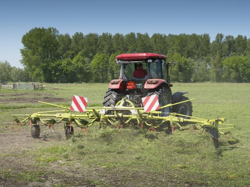 Ciągnika i trawy zataczarz pracuje w holenderskiej łące w prowinci południowy Holland w holandiach obrazy royalty free