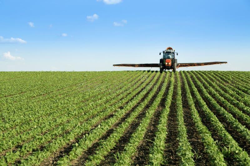 Ciągnikowy opryskiwanie soi uprawy pole obrazy stock