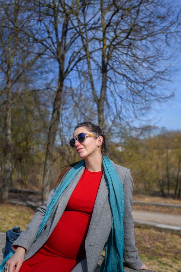 Ciężarna dziewczyna w czerwonej sukni w parku Portret piękna kobieta w ciąży w czerwonej sukni błękitnym szaliku w szarym żakieci obraz stock