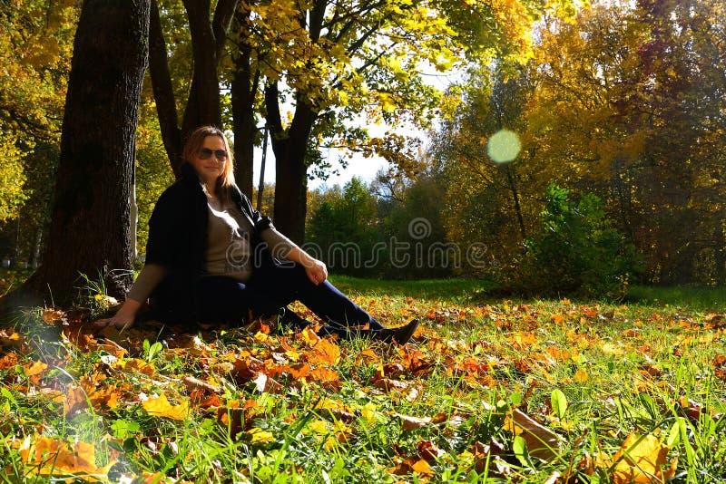 Ciężarna dziewczyna w jesień lesie fotografia stock