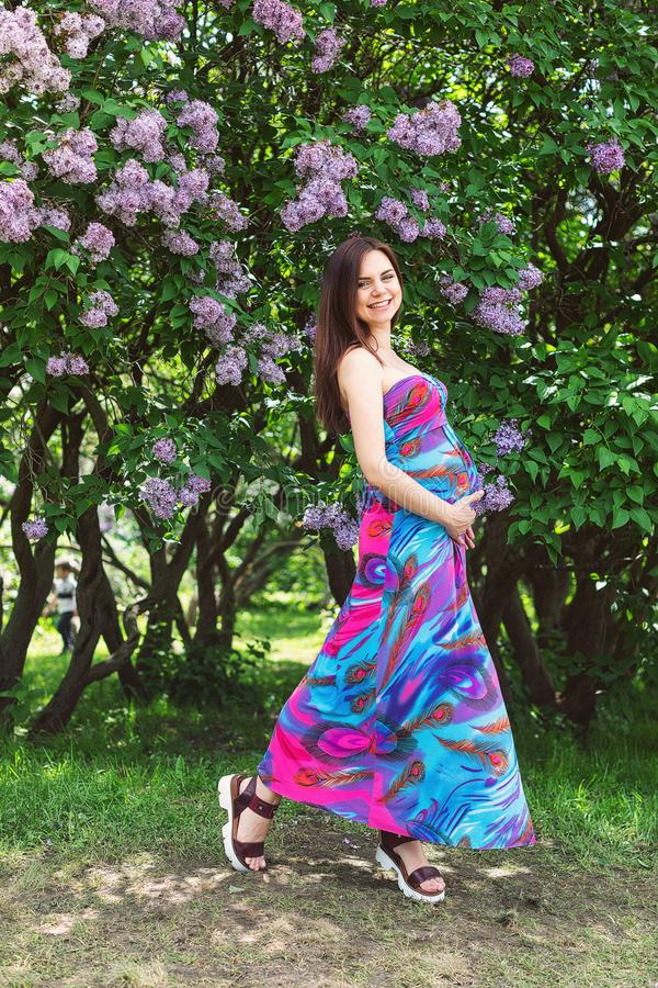 Ciężarna dziewczyna w sukni w lawenda ogródzie fotografia royalty free