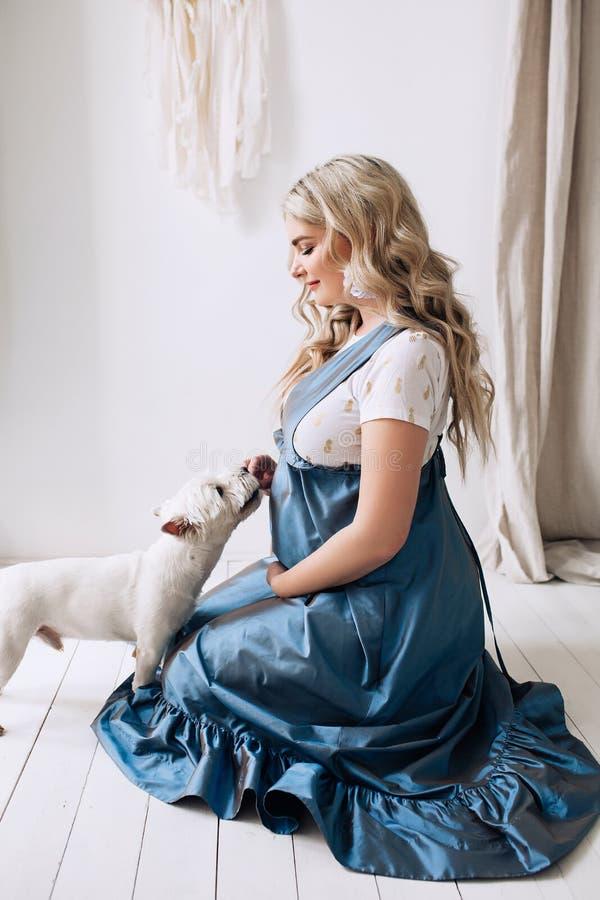 Ciężarna europejska kobieta z jej psem w białym mieszkaniu, europejska kobieta czekać na dziecka, prenant kobieta z światłem obraz stock
