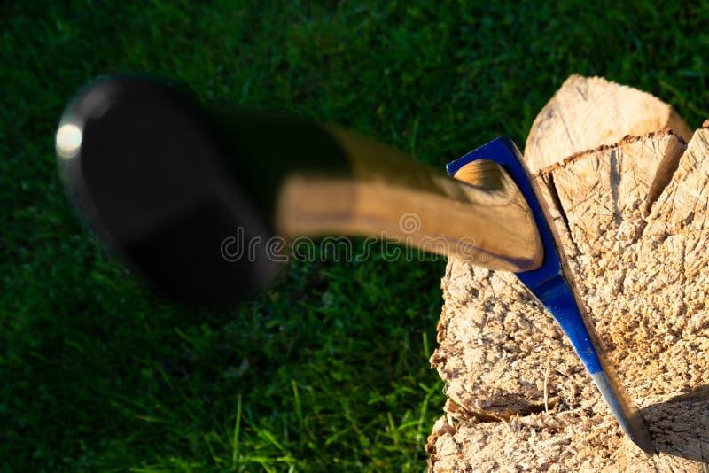 Ciężka cioska wtykająca w drzewnym trzonie zdjęcia royalty free