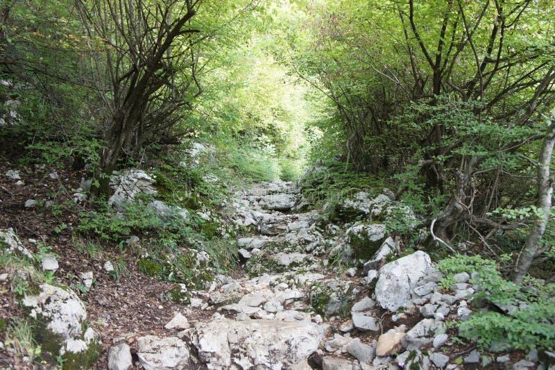 Ciężka droga rockowy monaster Ostrog w Montenegro zdjęcia stock