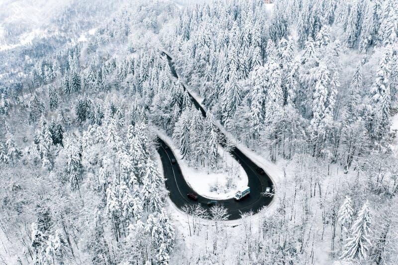 Ciężki opad śniegu i droga po środku lasu fotografia royalty free