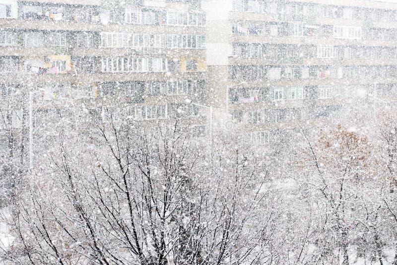 Ciężki opad śniegu lub śnieżyca fotografia stock