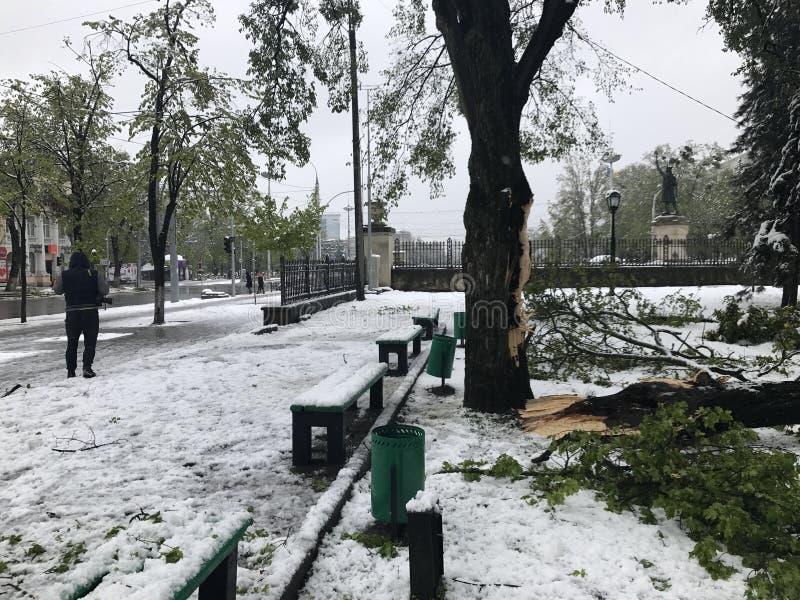 Ciężki opad śniegu uderza Chisinau po środku wiosny zdjęcie stock