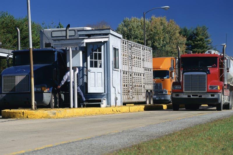 Ciężkie ciężarówki fotografia royalty free