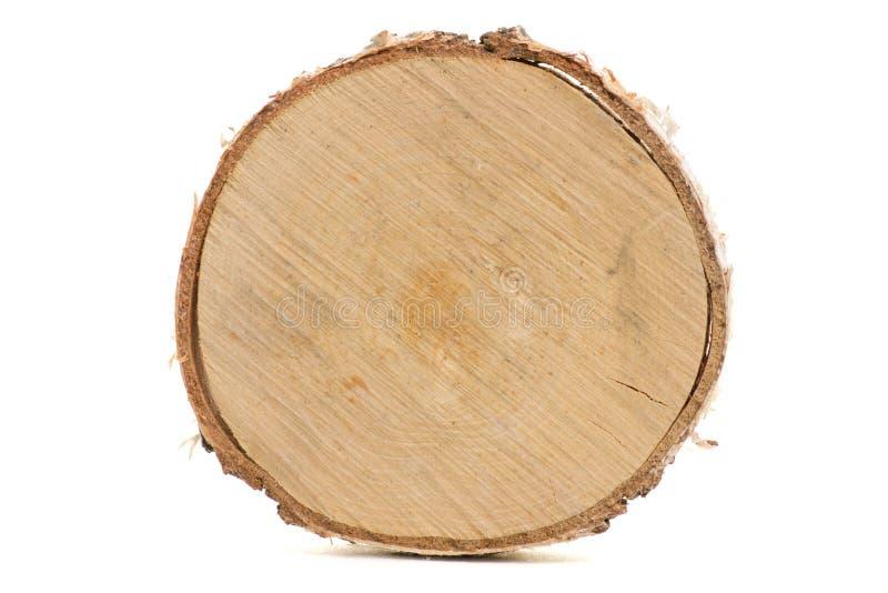 Cięcie drzewnego bagażnika odosobnienie obraz stock