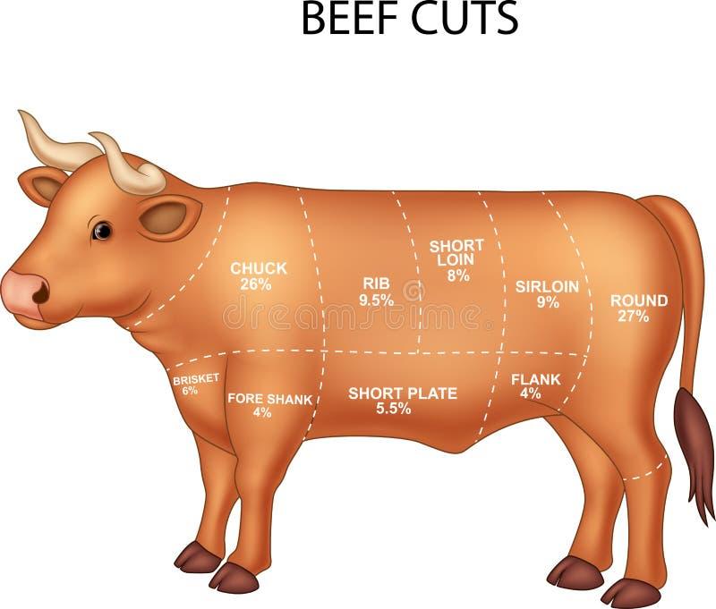 Cięcie wołowina set ilustracja wektor