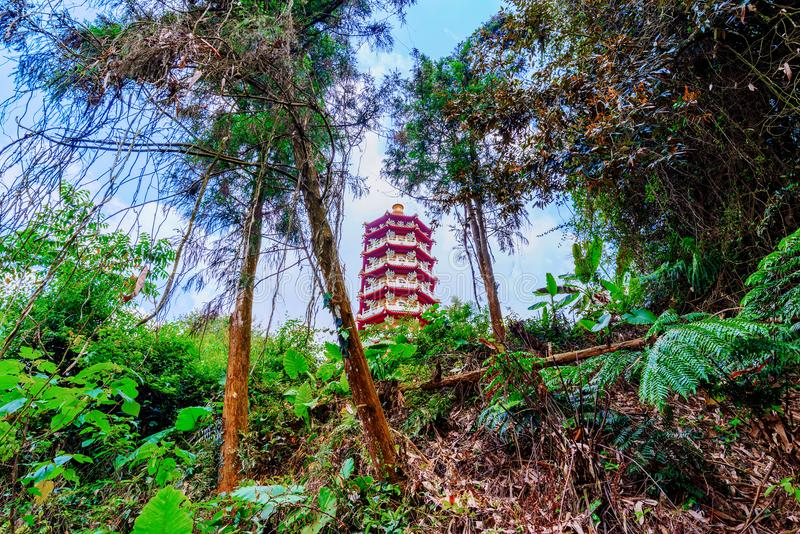 Ci`en pagoda architecture. With jungle royalty free stock photography