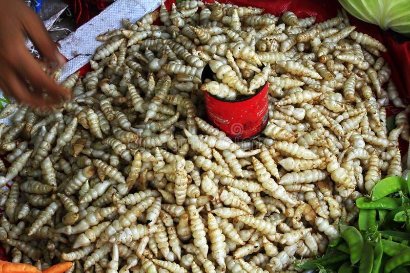 Ci sono verdure sconosciute nel mercato al Myanmar fotografia stock libera da diritti