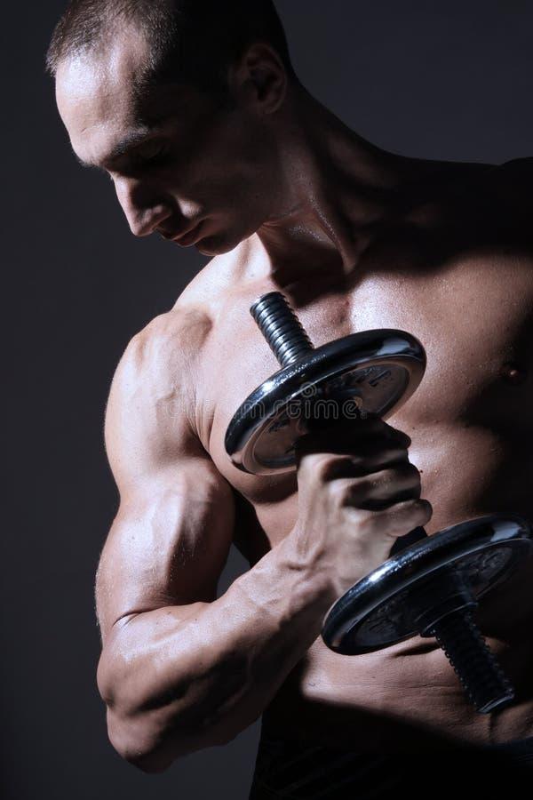 Download Ciała Budowniczego Mięśniowy Seksowny Obraz Stock - Obraz złożonej z mężczyzna, fitness: 13327197