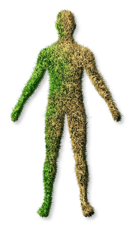 ciała choroby istota ludzka ilustracji
