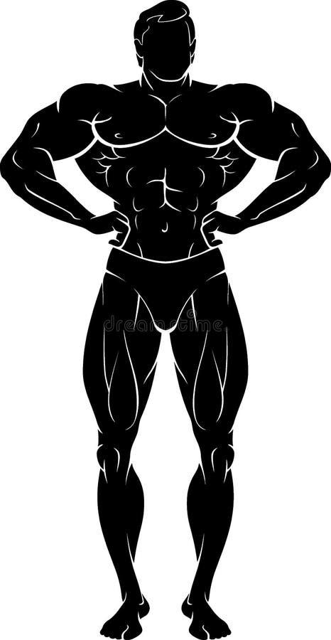 Ciało budowniczego Męskiej klatki piersiowej mięśnie ilustracji