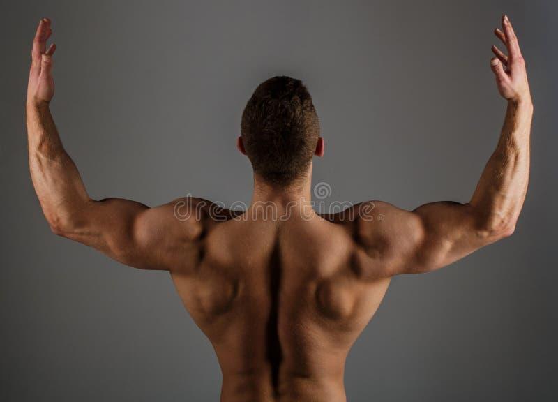 Ciało budowniczy, umięśniona samiec, silny mężczyzna, bodybuilder, mięśniowy mężczyzna, silna samiec Brawny faceta bodybuilder Sp fotografia stock