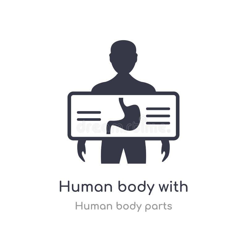 ciało ludzkie z promienia półkowym ogniskowaniem na żołądka konturu ikonie x odosobniona kreskowa wektorowa ilustracja od cia?o l ilustracja wektor