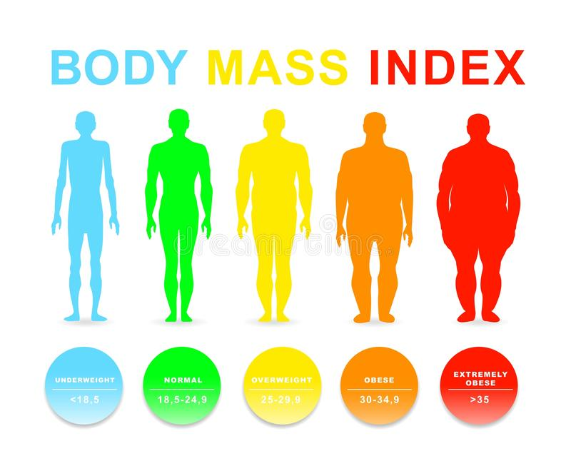 Ciało masy wskaźnika wektoru ilustracja Sylwetki z różnymi otyłość stopniami ilustracja wektor