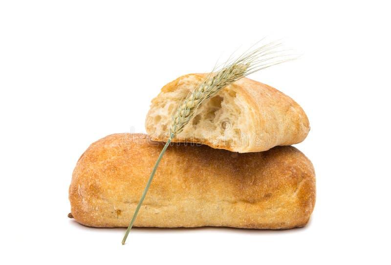 Ciabatta, Włoski chleb odizolowywający zdjęcie stock