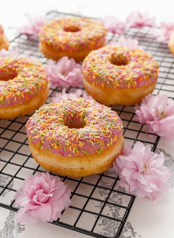 Ciambella fresca rosa dolce decorata con il fiore di fioritura giapponese di Cherry Tree immagine stock