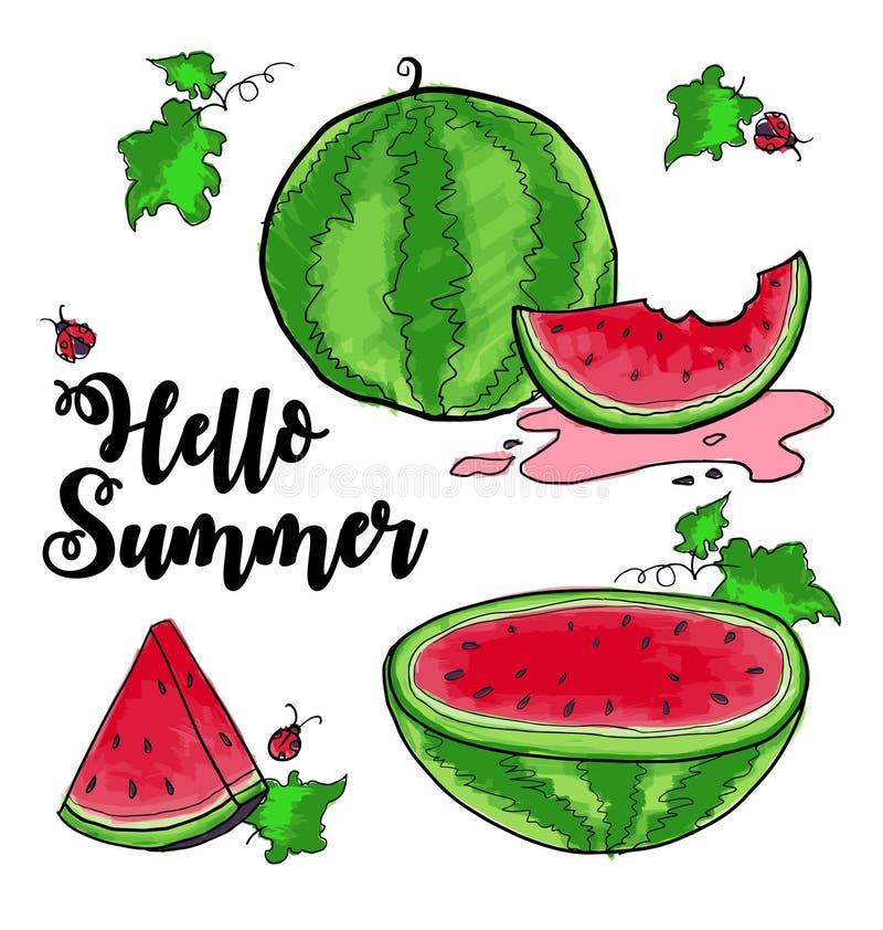 Ciao anguria di estate illustrazione di stock