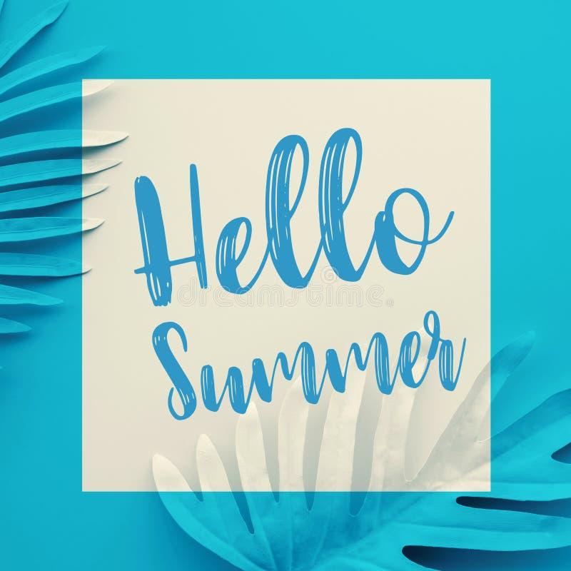 Ciao concetti di estate con testo sulle foglie tropicali pastelli sul fondo di colore Progettazione della decorazione fotografie stock libere da diritti
