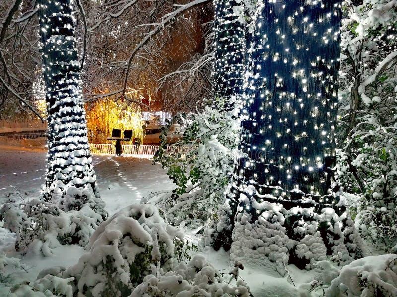 Ciao dicembre fotografia stock libera da diritti