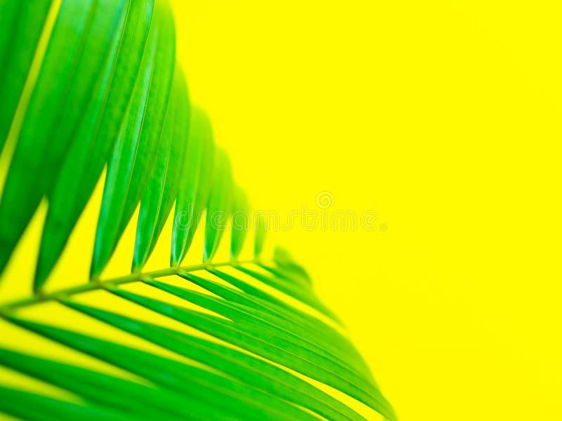 Ciao estate immagini stock