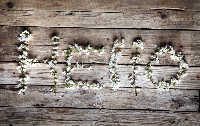 Ciao fiori dei fiori di ciliegia su fondo di legno annata fotografia stock libera da diritti