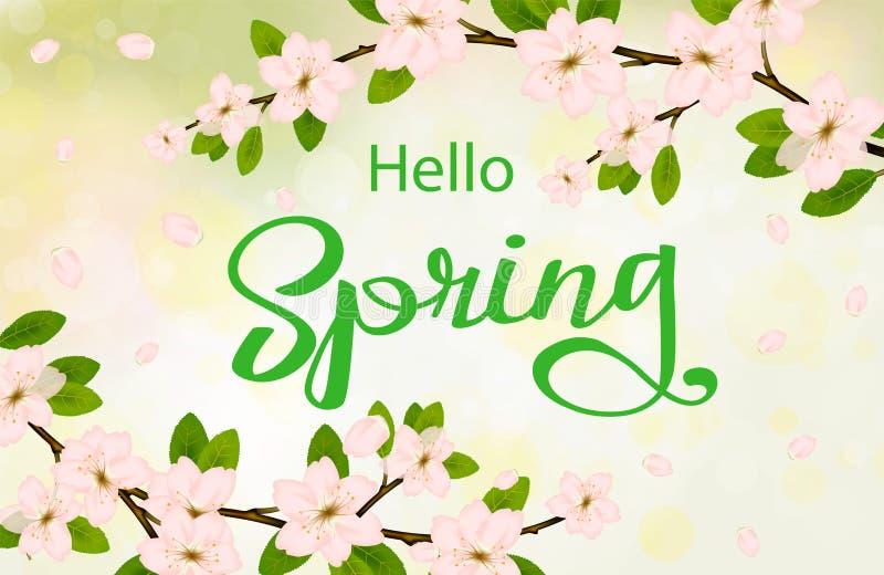 Ciao fondo della molla con i fiori di ciliegia illustrazione di stock