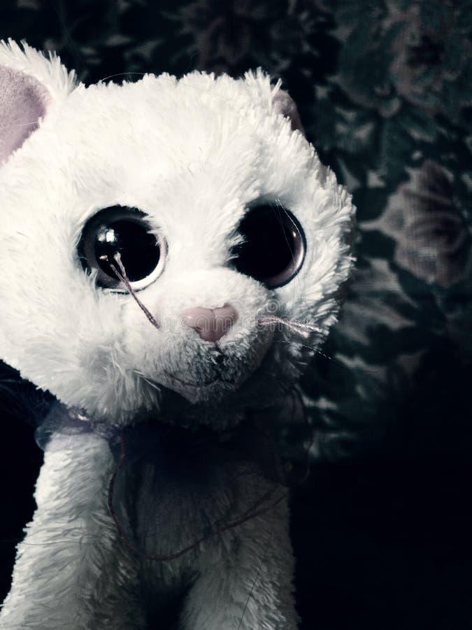 Ciao gattino terrificante immagini stock