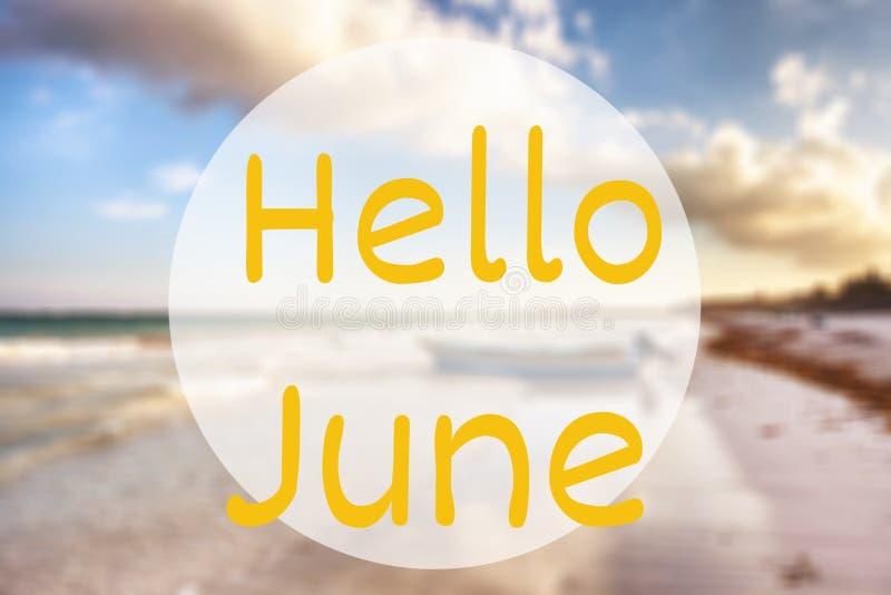 Ciao giugno fotografia stock libera da diritti