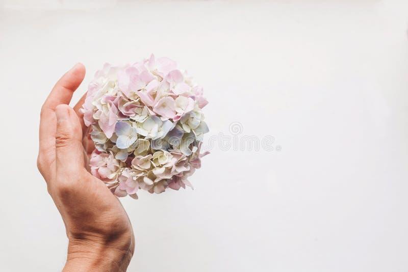 Ciao il concetto Giorno di madri felice Immagine tenera creativa della molla Giorno internazionale del ` s delle donne Mano che t fotografia stock