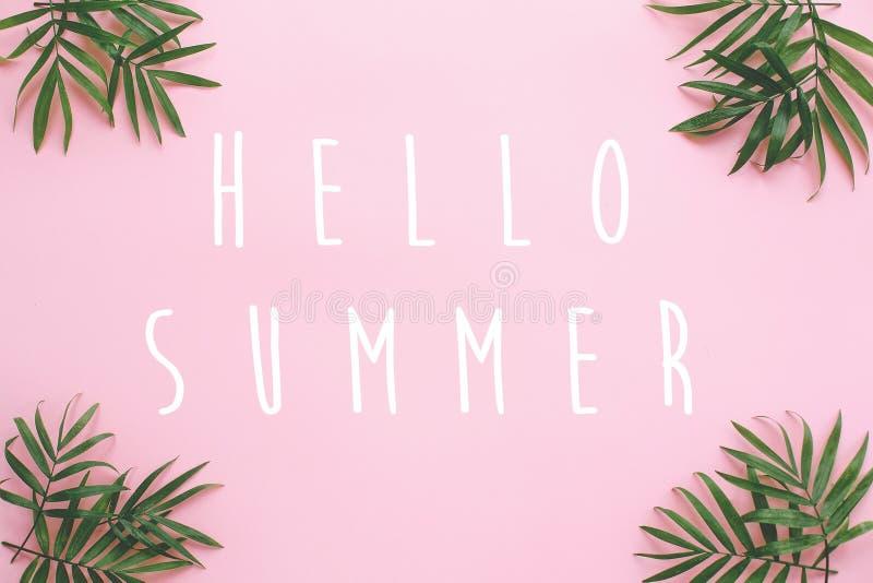 Ciao il testo dell'estate sulle foglie di palma fresche rasenta il fondo rosa fotografia stock
