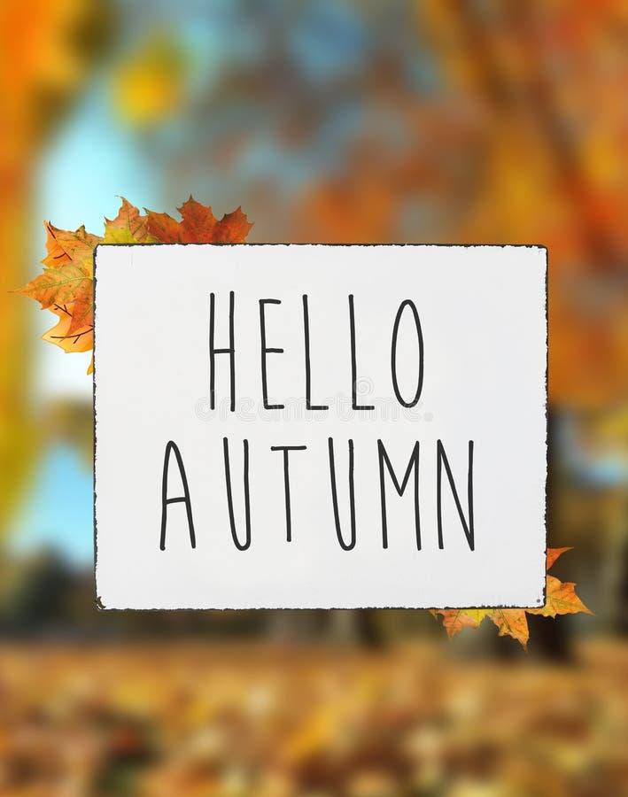 Ciao il testo di autunno sulle foglie bianche di caduta dell'insegna del conteggio su placchetta offusca la b immagine stock libera da diritti
