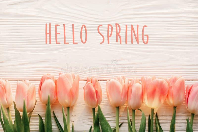 Ciao segno del testo della molla, bei tulipani rosa sul wo rustico bianco immagine stock libera da diritti
