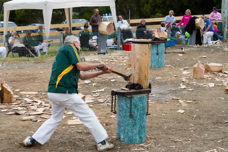 Ciapania wydarzenia drewno