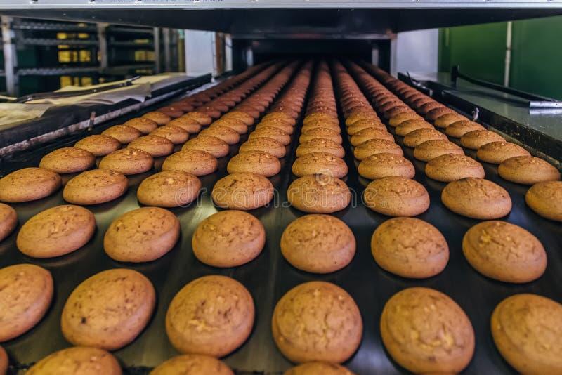 Ciasteczko fabryka Linia produkcyjna wypiekowi ciastka Selekcyjna ostrość zdjęcia royalty free