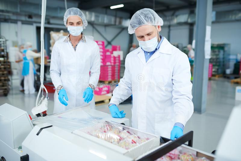 Ciasteczko pracowników kocowania fabryczni pudełka w plastikowego film fotografia stock