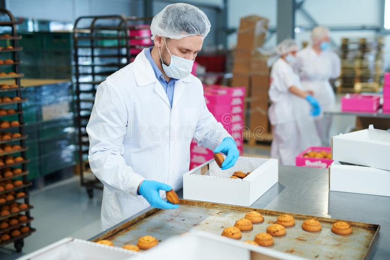 Ciasteczko pracownika fabrycznego kocowania ciasto w pudełko zdjęcia royalty free