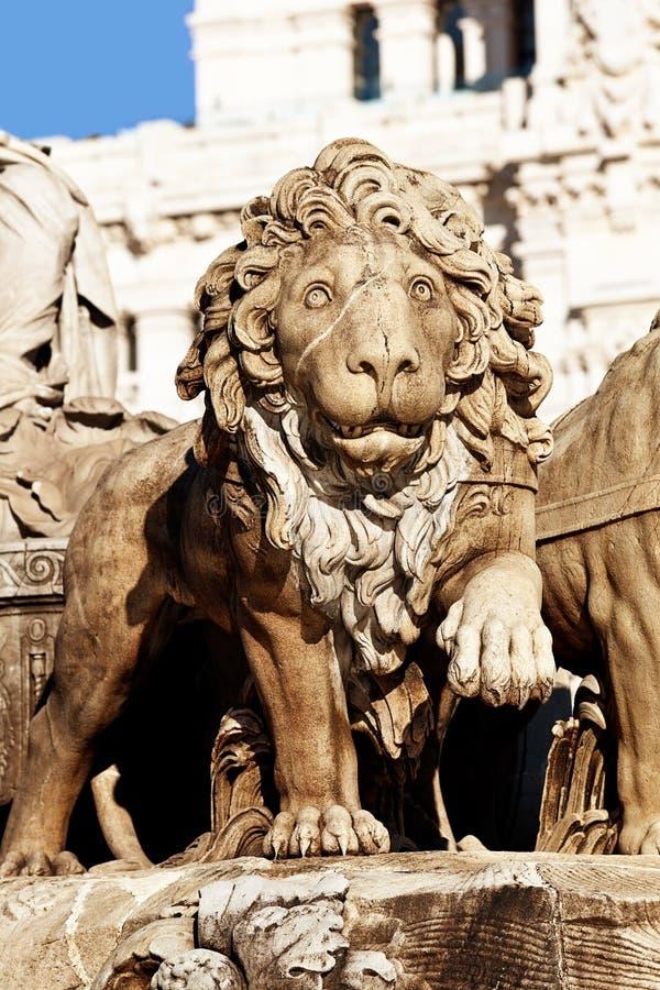 Cibeles Brunnen-Stein-Löwe-Detail, Madrid lizenzfreie stockbilder