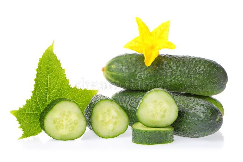 Cibo biologico sano Cetrioli verdi freschi ortaggi naturali con foglie e fiori isolati su fondo bianco Chiudi immagine fotografie stock libere da diritti